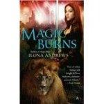 magic-burns1